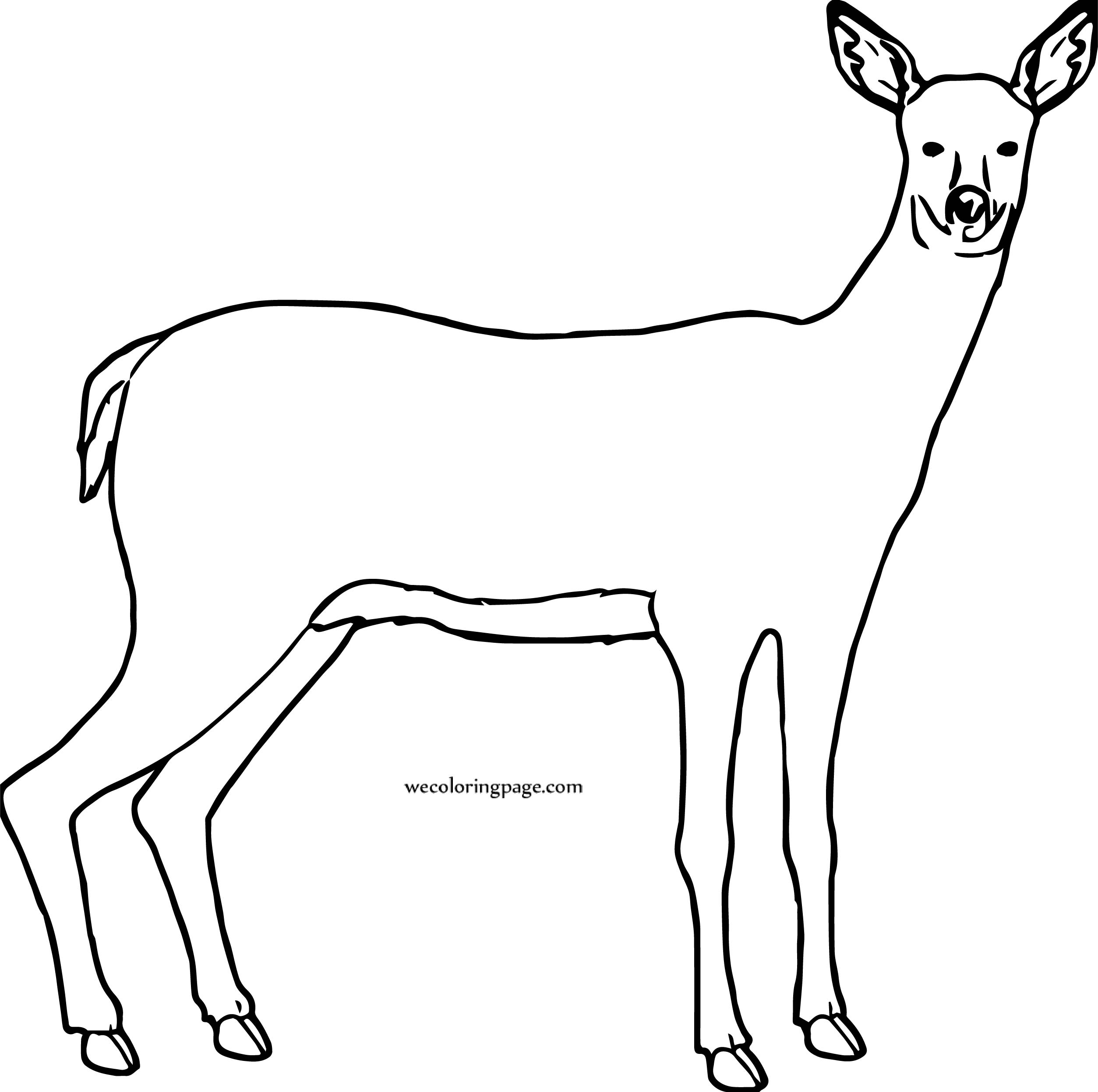 Deer Free To Use Coloring Page