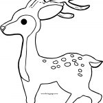 Deer Spotted Deer Coloring Page