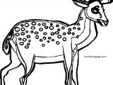 Deer Spotted Spotted Deer Coloring Page