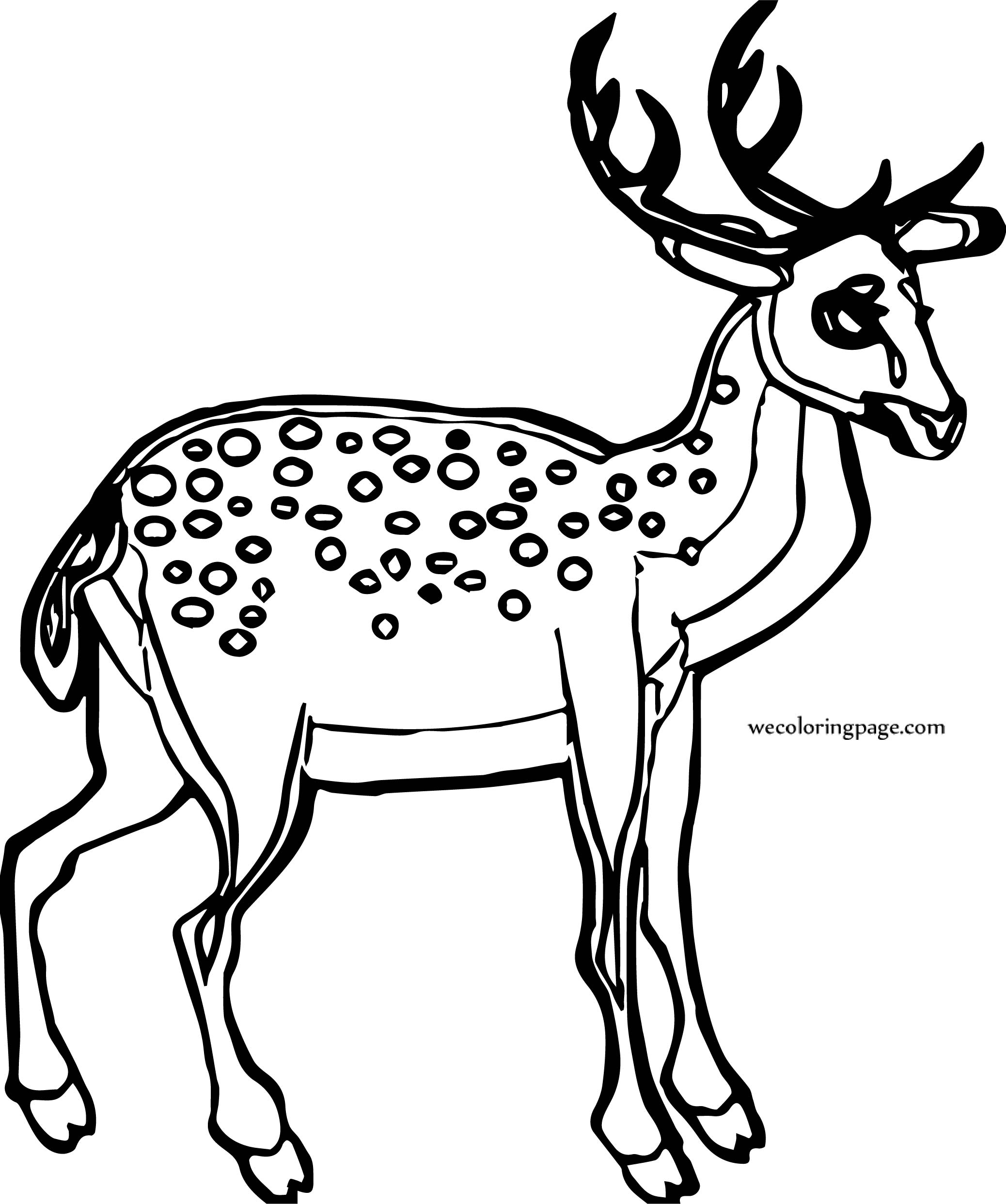 Deer Spotted Spotted Deer Coloring Page | Wecoloringpage