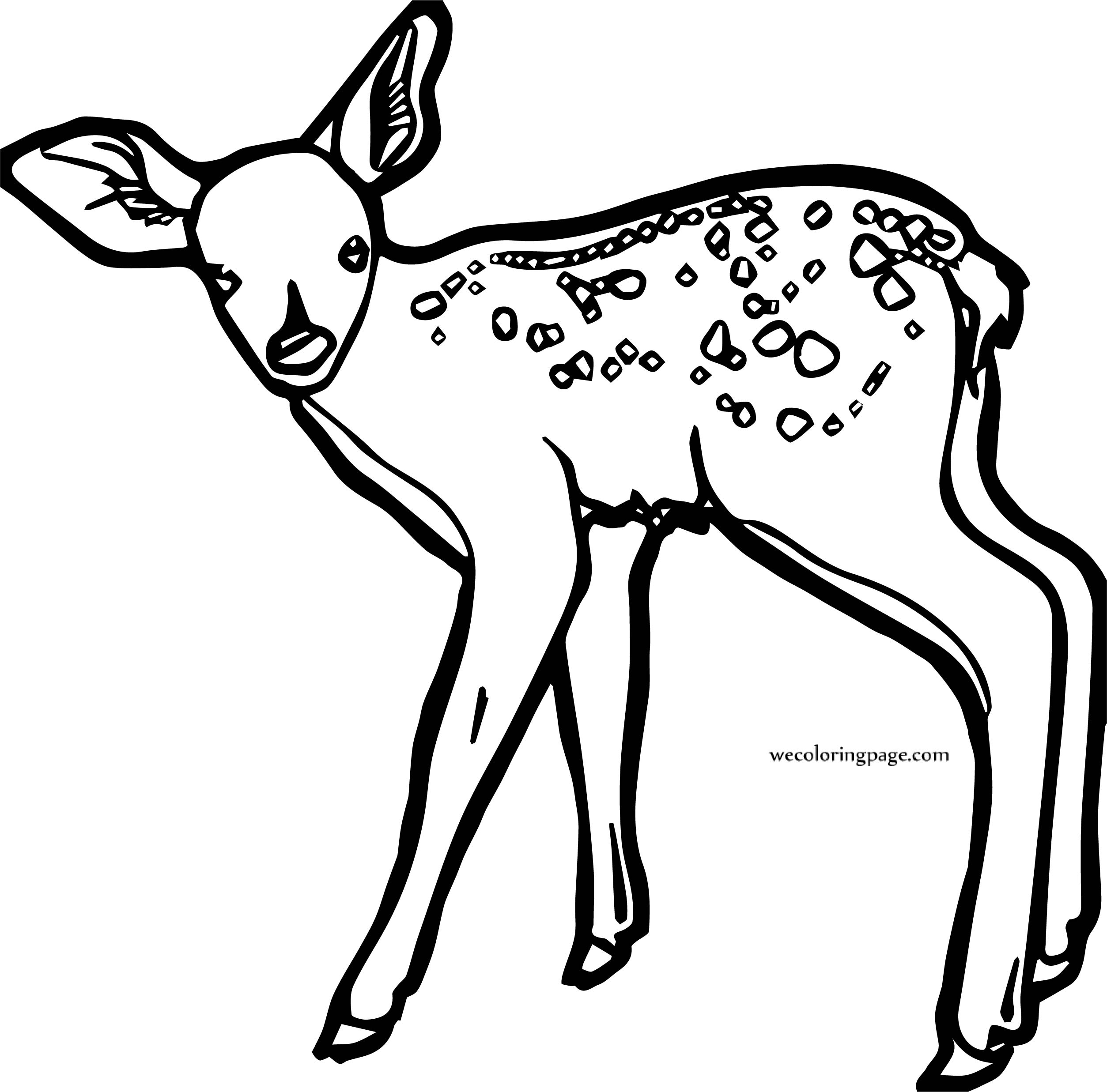 Fawn spotted deer coloring page for Deer coloring pages
