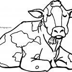 Gallery For Sitting Cow Coloring Page