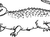 Hungry Crocodile Alligator Coloring Page