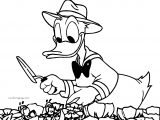 Lifes Quote From Donald Duck Garden Coloring Page