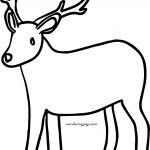 Search Results For Deer Pictures Image Coloring Page