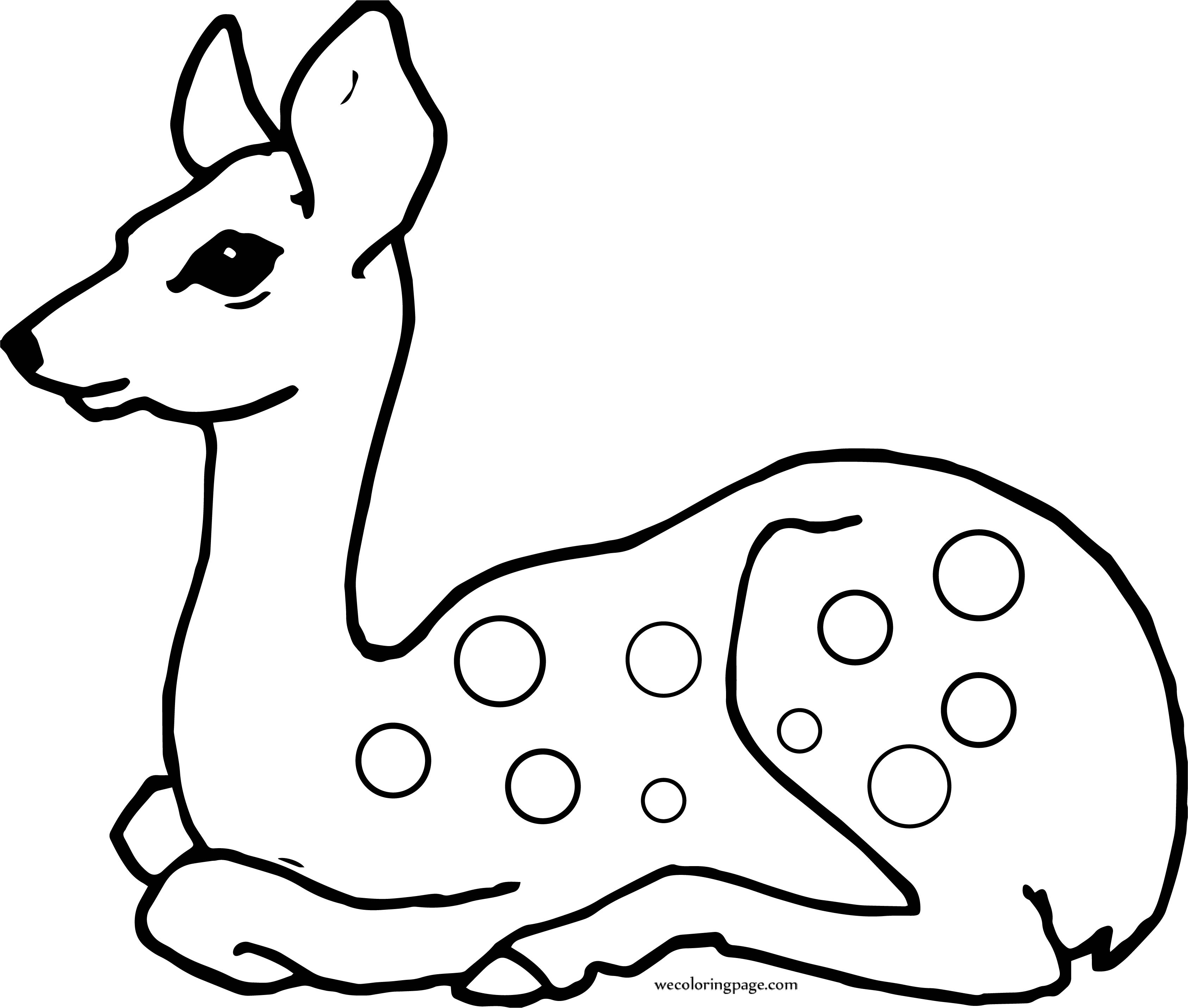 Staying Deer Coloring Page