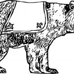 That Bear Coloring Page