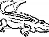 Waiting Crocodile Alligator Coloring Page