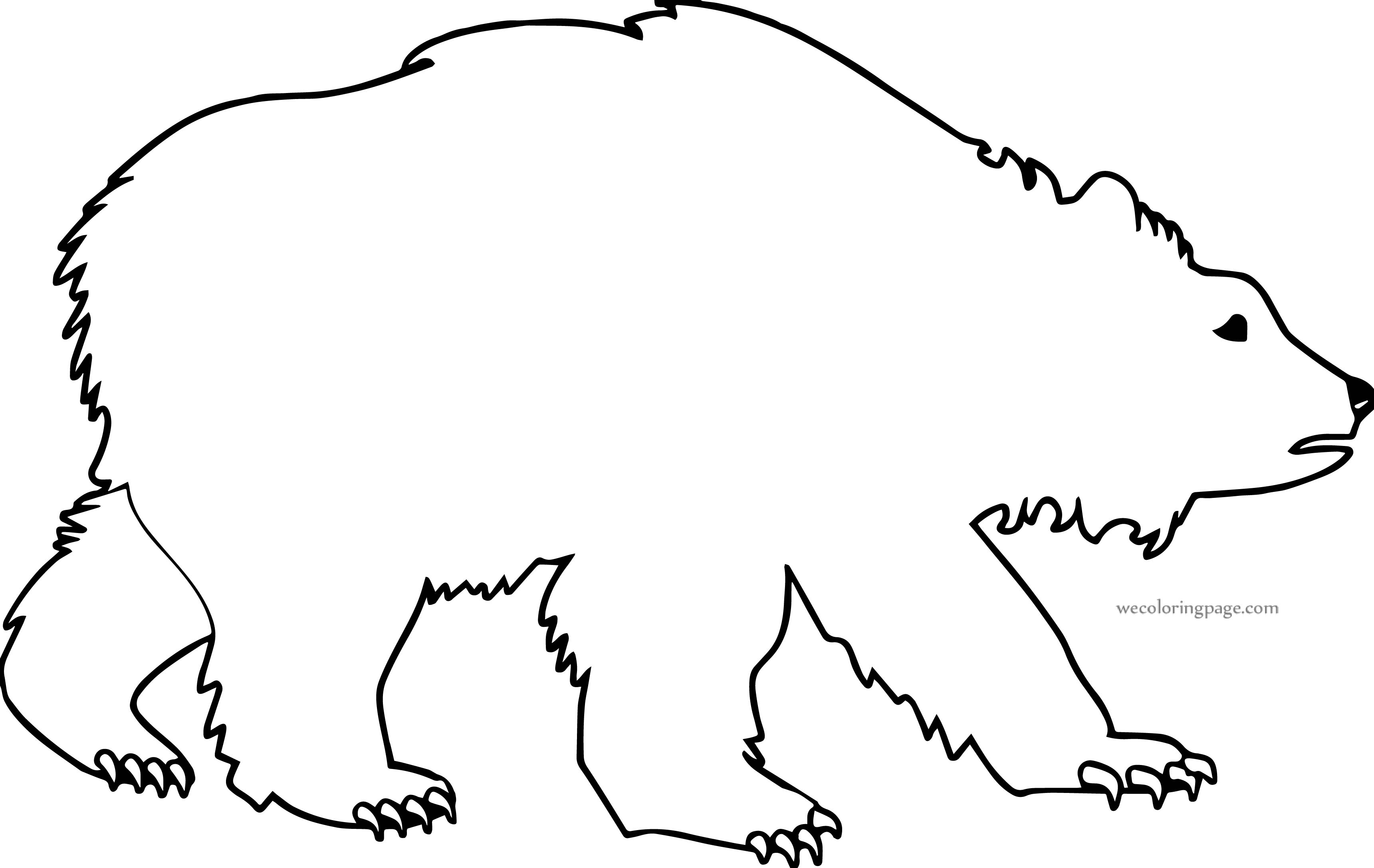Write Bear Coloring Page