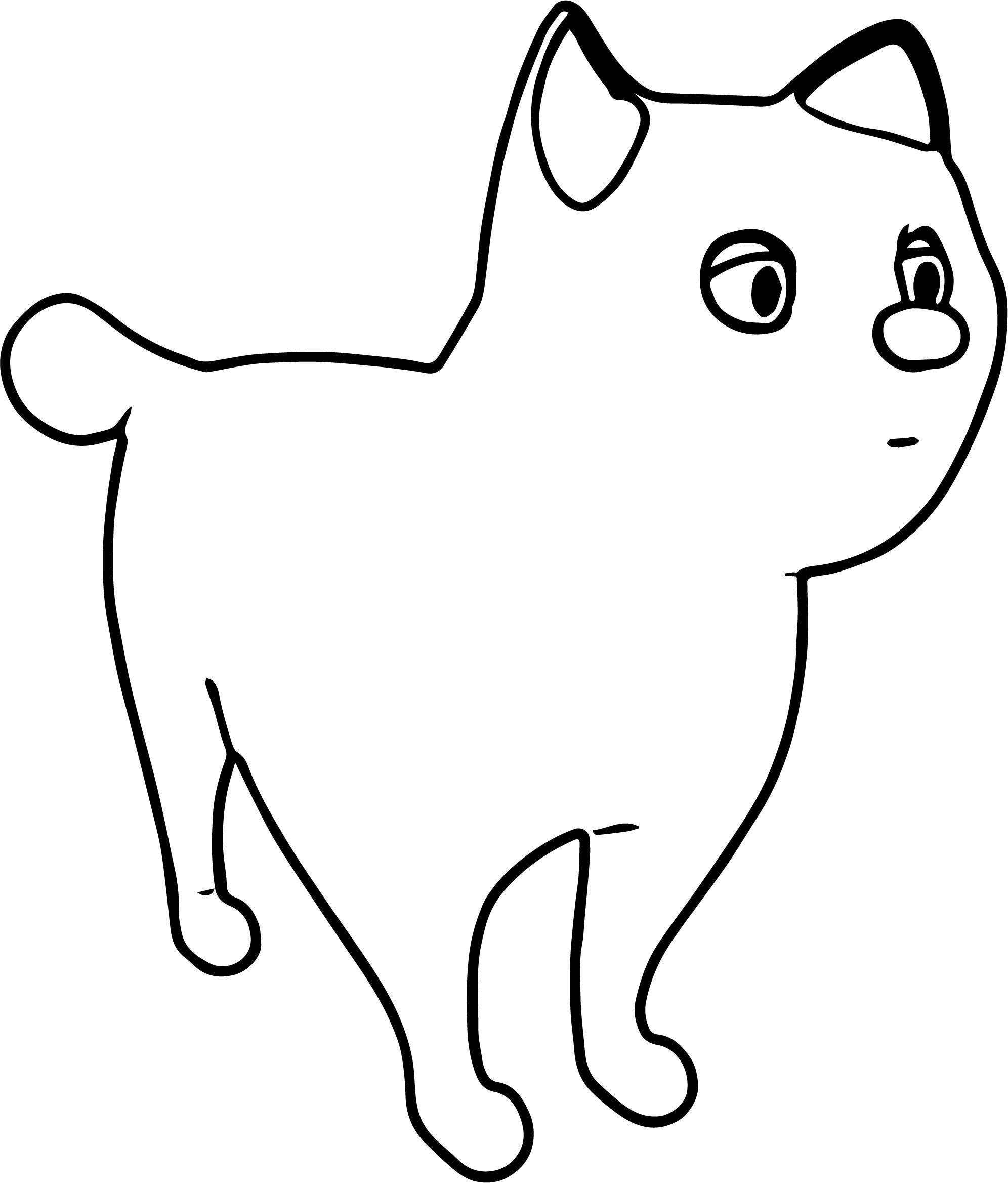 All Cat Coloring Page