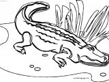 All Crocodile Alligator Coloring Page