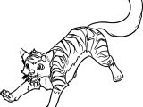 Running New Big Cat Coloring Page