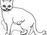 Cat Coloring Page319