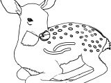 Charge Spotted Deer Coloring Page