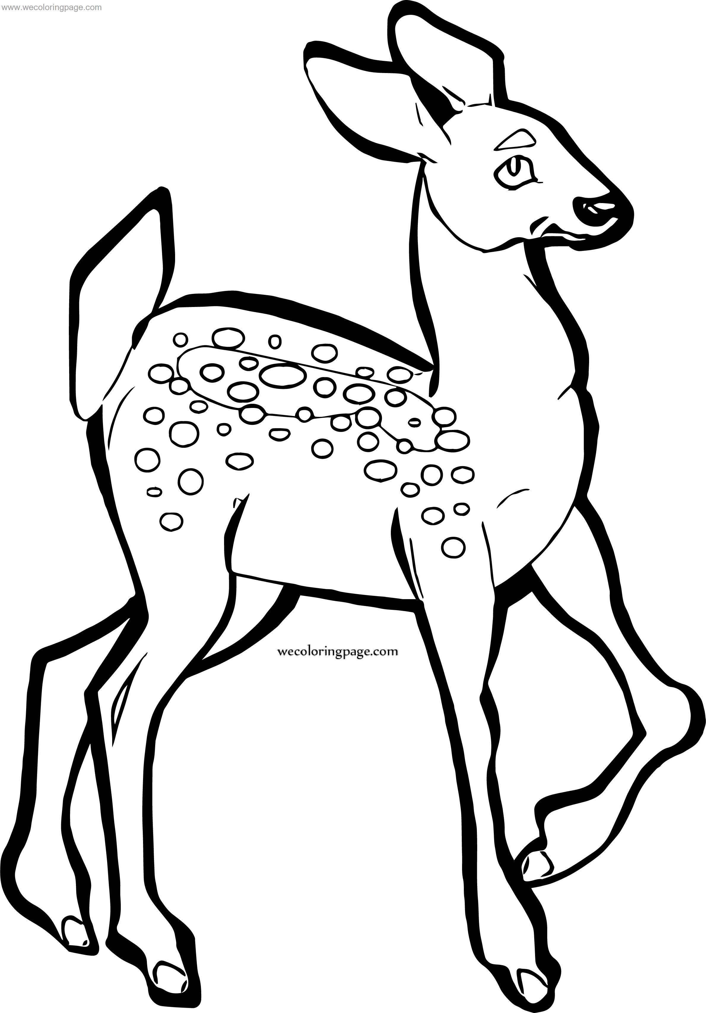 Dad Spotted Deer Coloring Page
