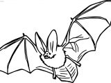 Does Bat Coloring Page