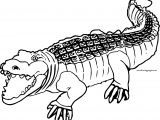 End Crocodile Alligator Coloring Page