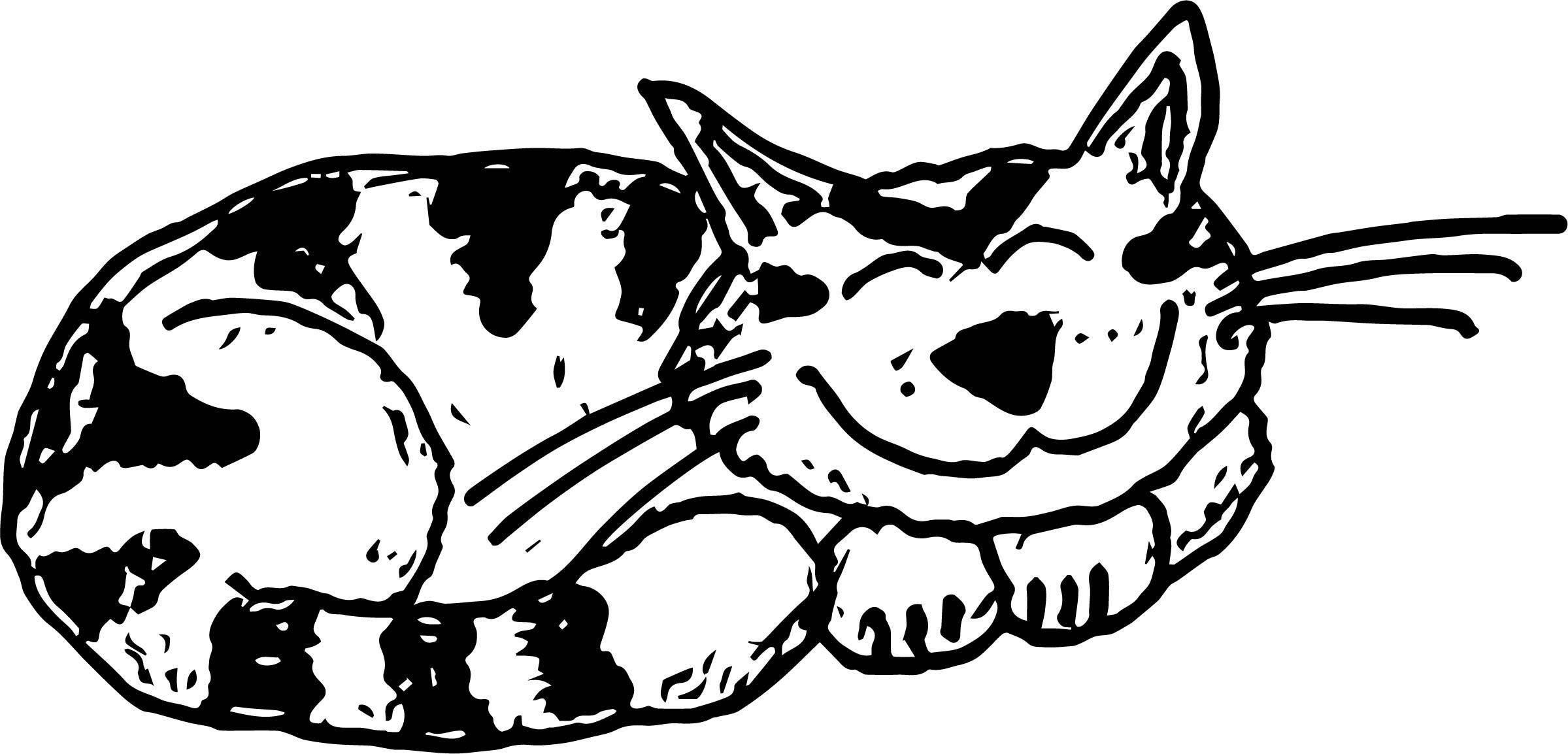 How Cat Coloring Page