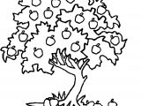 How To Draw Apple Tree Coloring Page