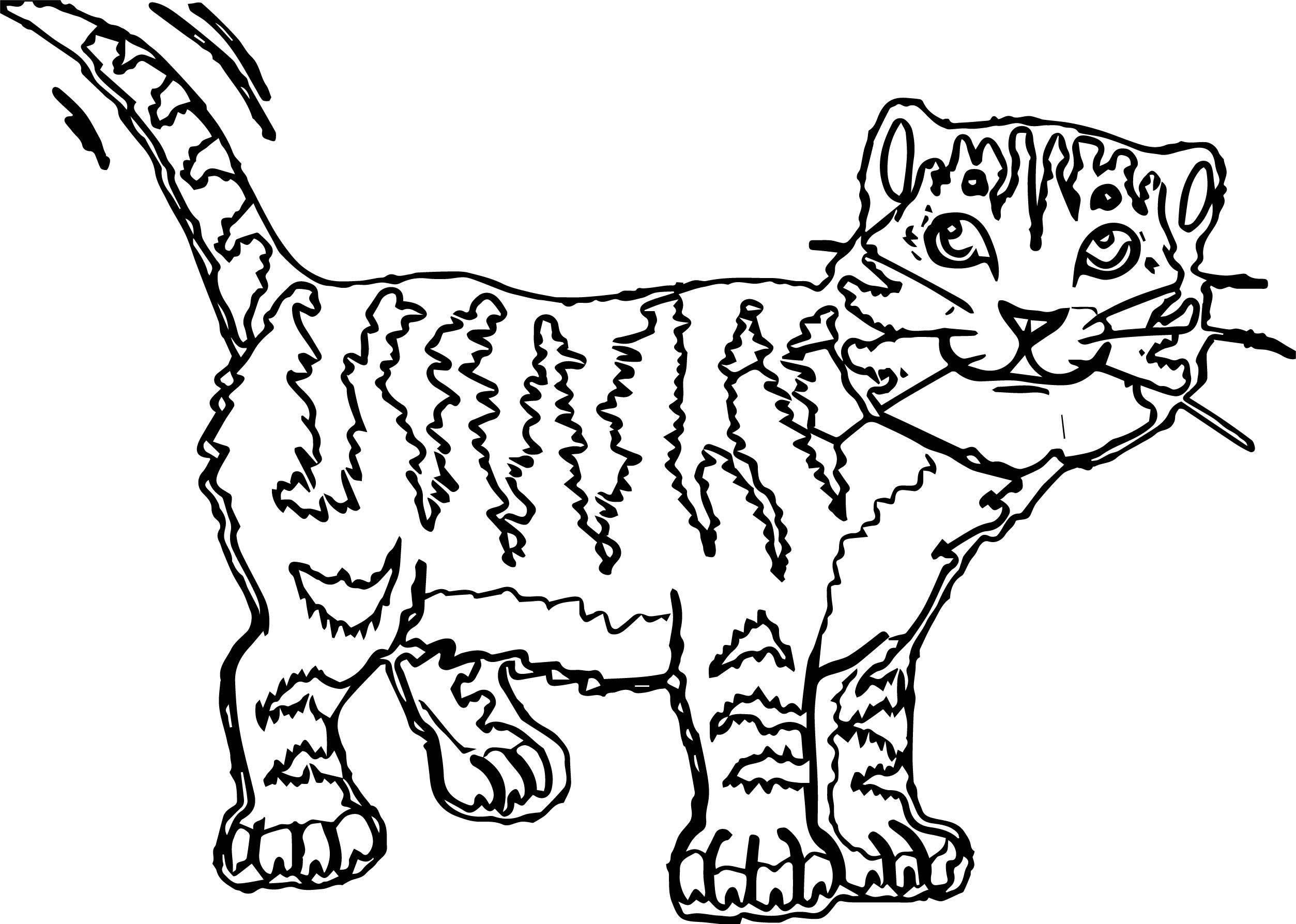 If Cat Coloring Page