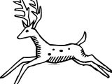 Jump Spotted Deer Coloring Page