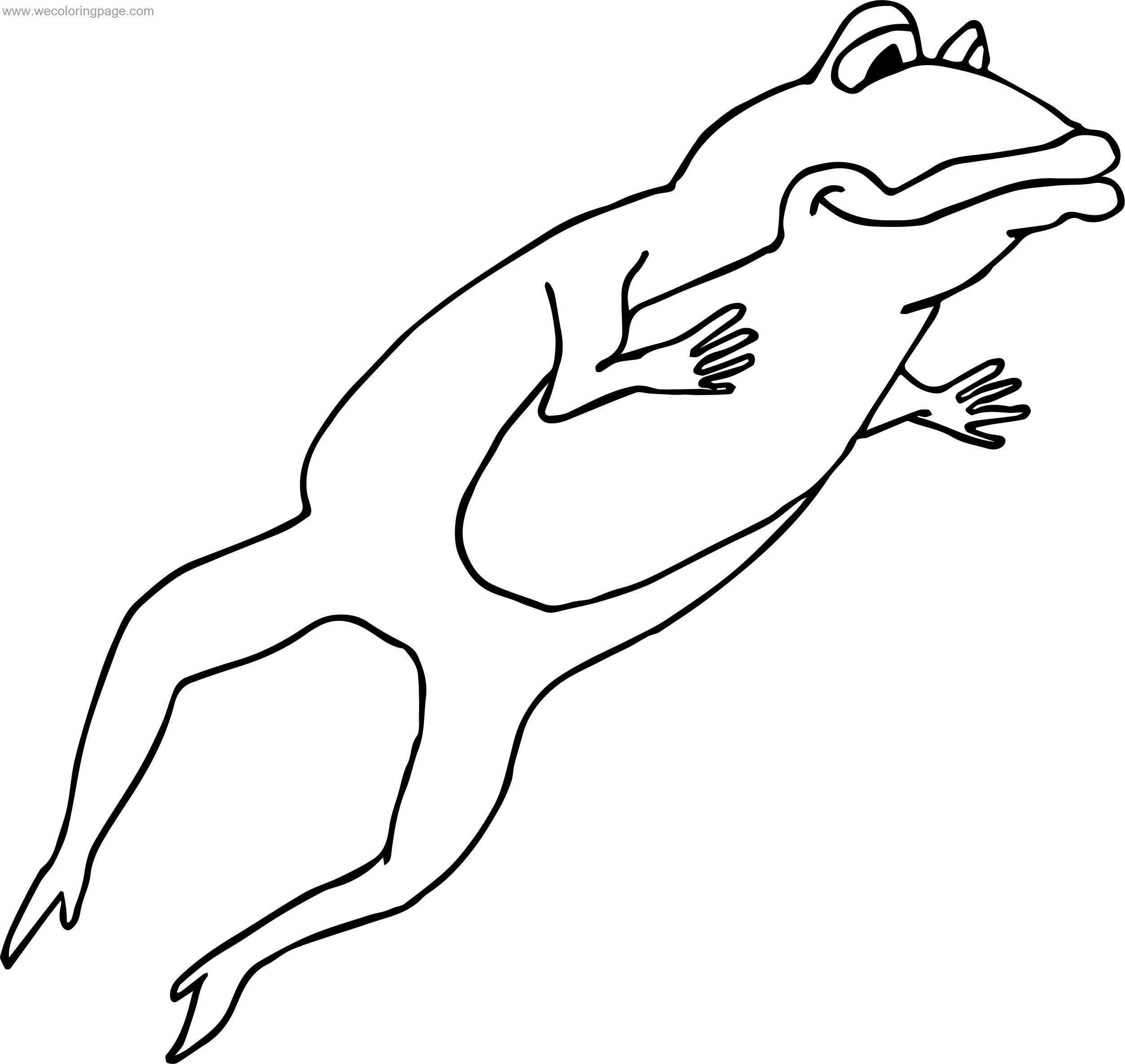 Just Jump Frog Coloring Page