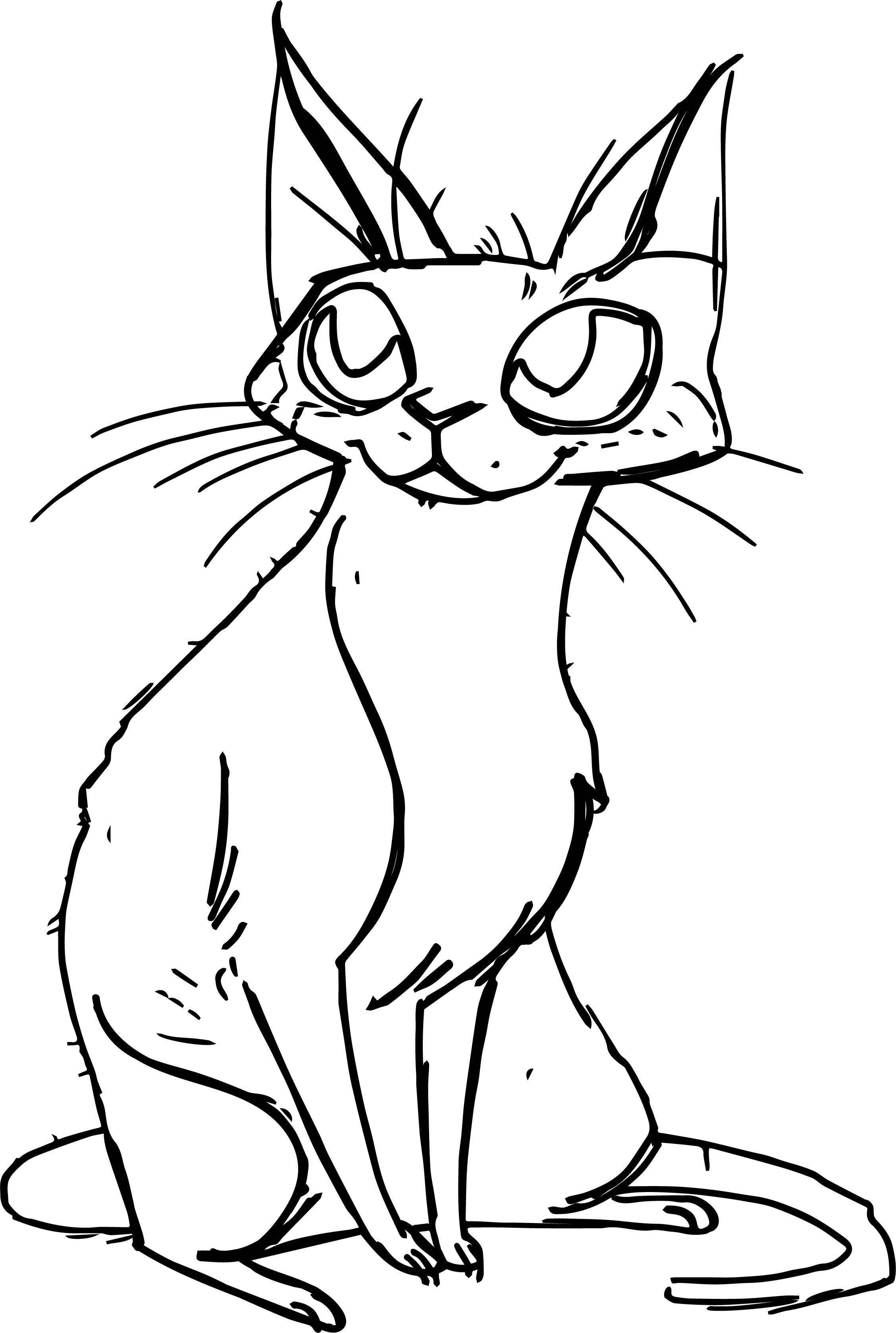 Land Cat Coloring Page