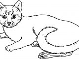 Mother Cat Coloring Page