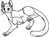 Must Cat Coloring Page