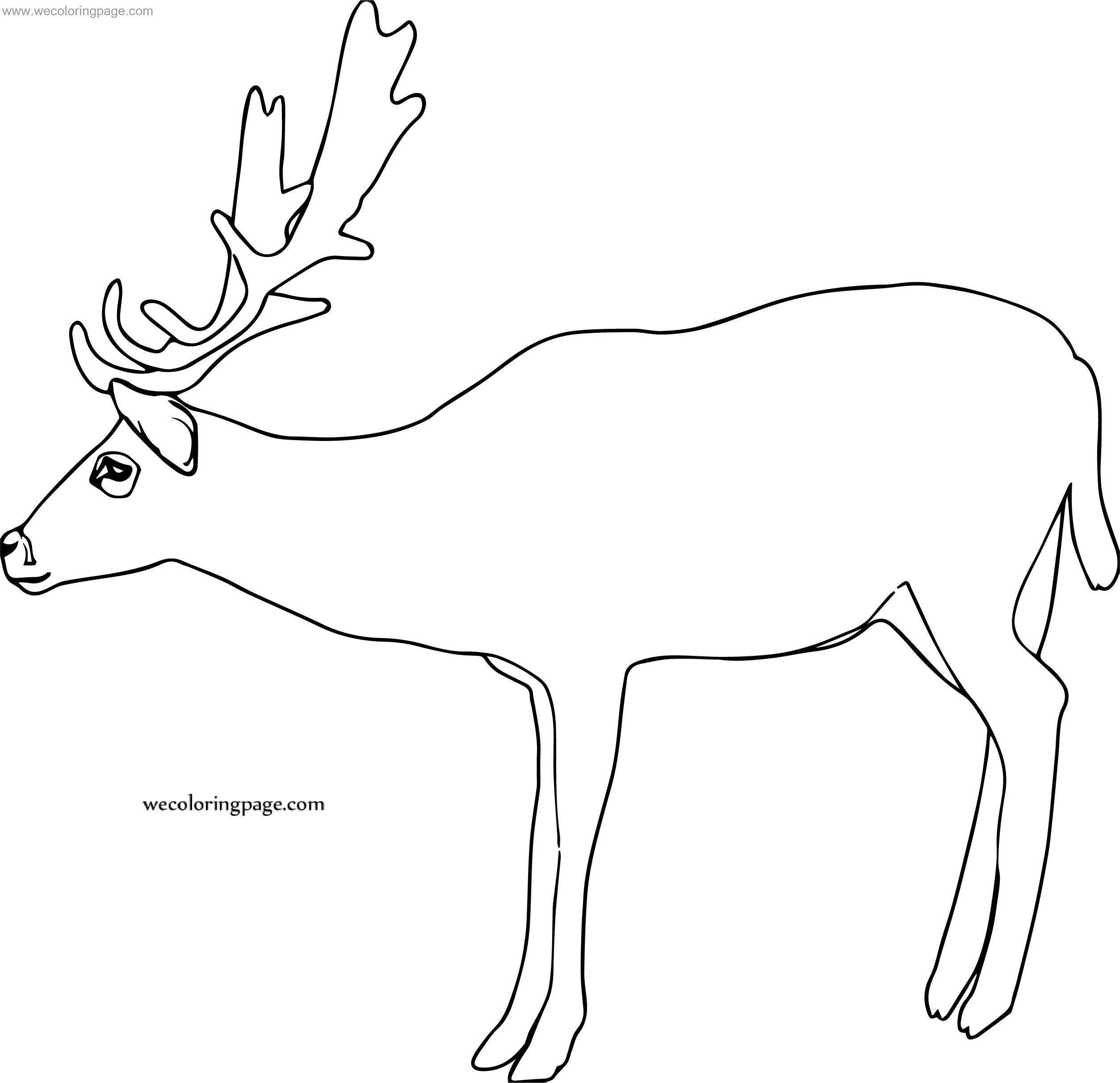 Original Deer Coloring Page