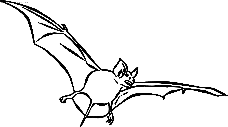 Said Bat Coloring Page