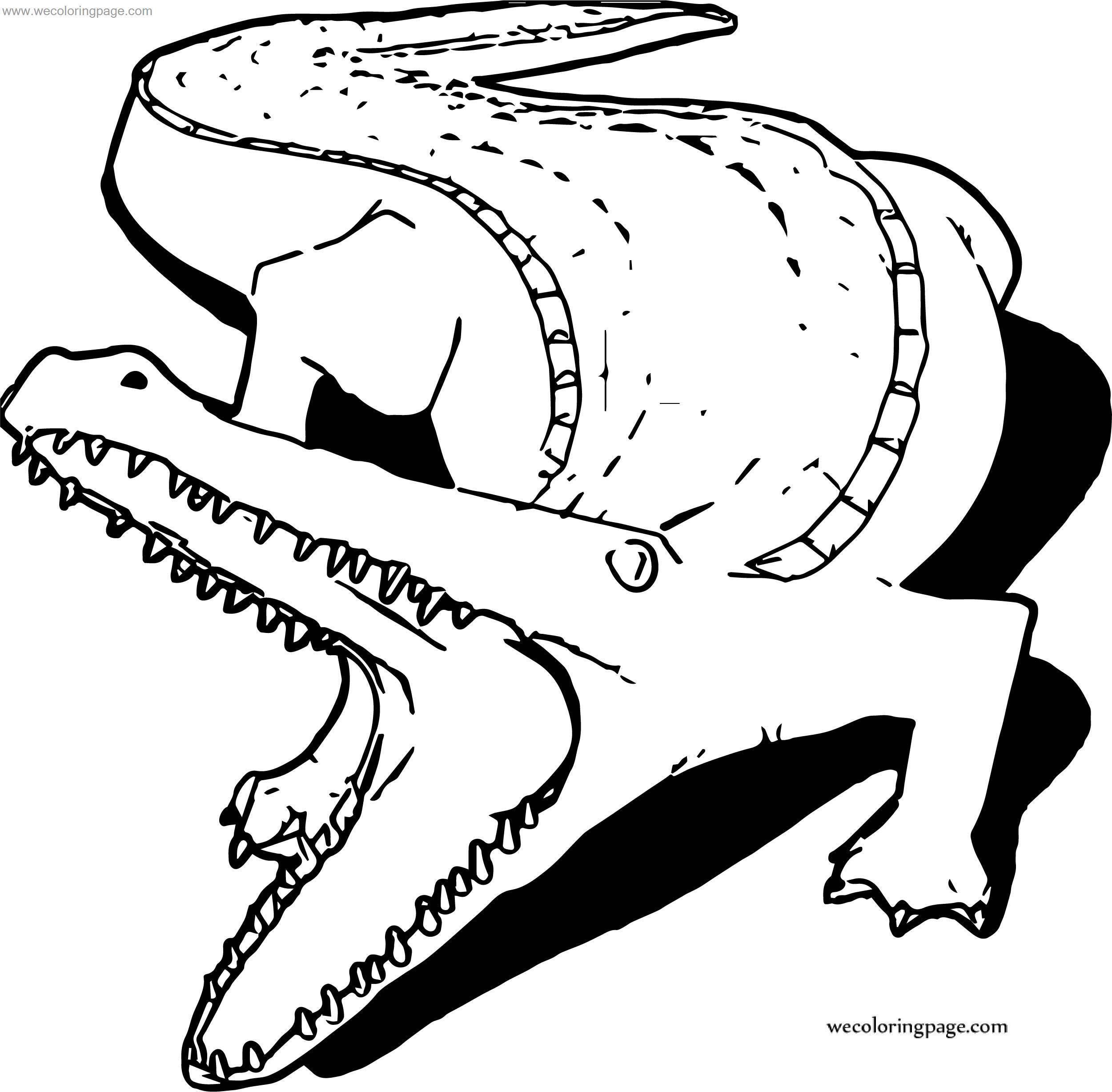 Said Crocodile Alligator Coloring Page