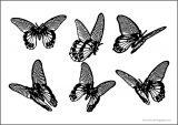 Six Butterfly Horizontal A4 Printable Coloring Page