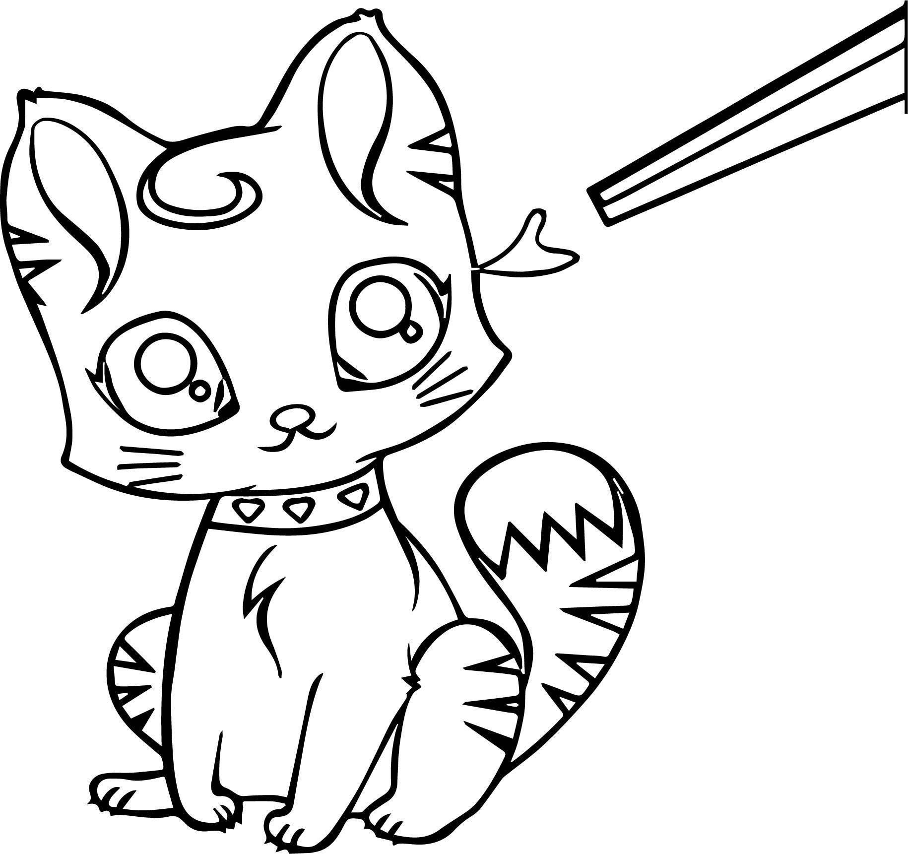 Small Cat Coloring Page
