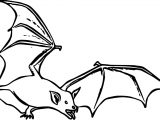 Some Bat Coloring Page