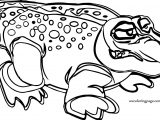 Some Crocodile Alligator Coloring Page