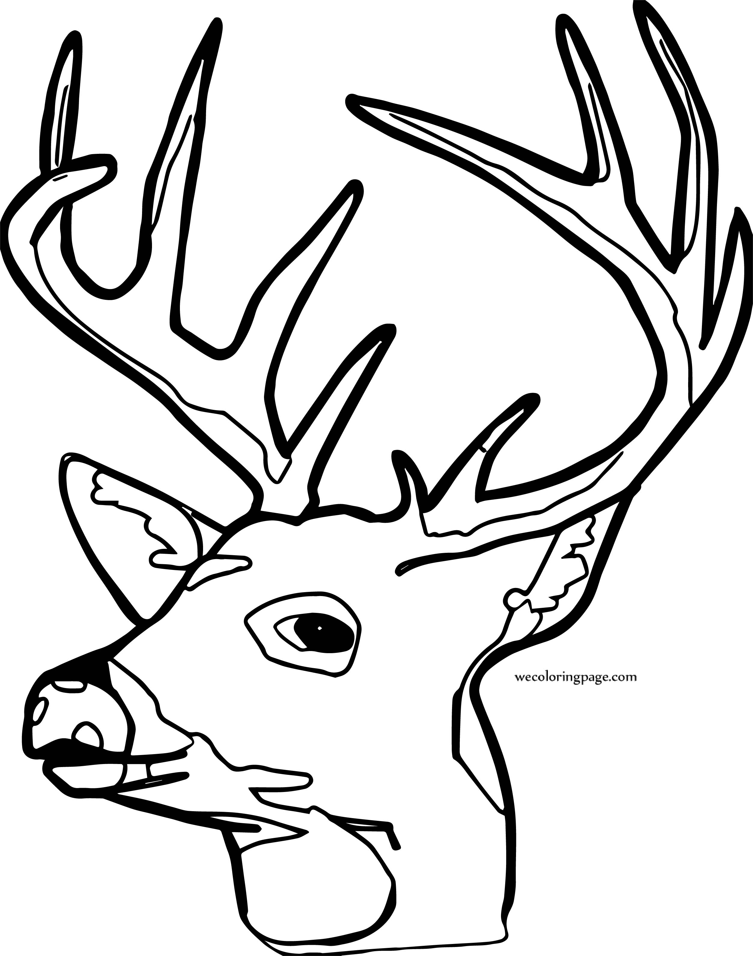 Spotted Deer Face Coloring Page