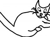 State Cat Coloring Page