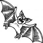 Tell-Bat-Coloring-Page.jpg