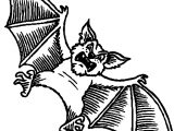 Tell Bat Coloring Page