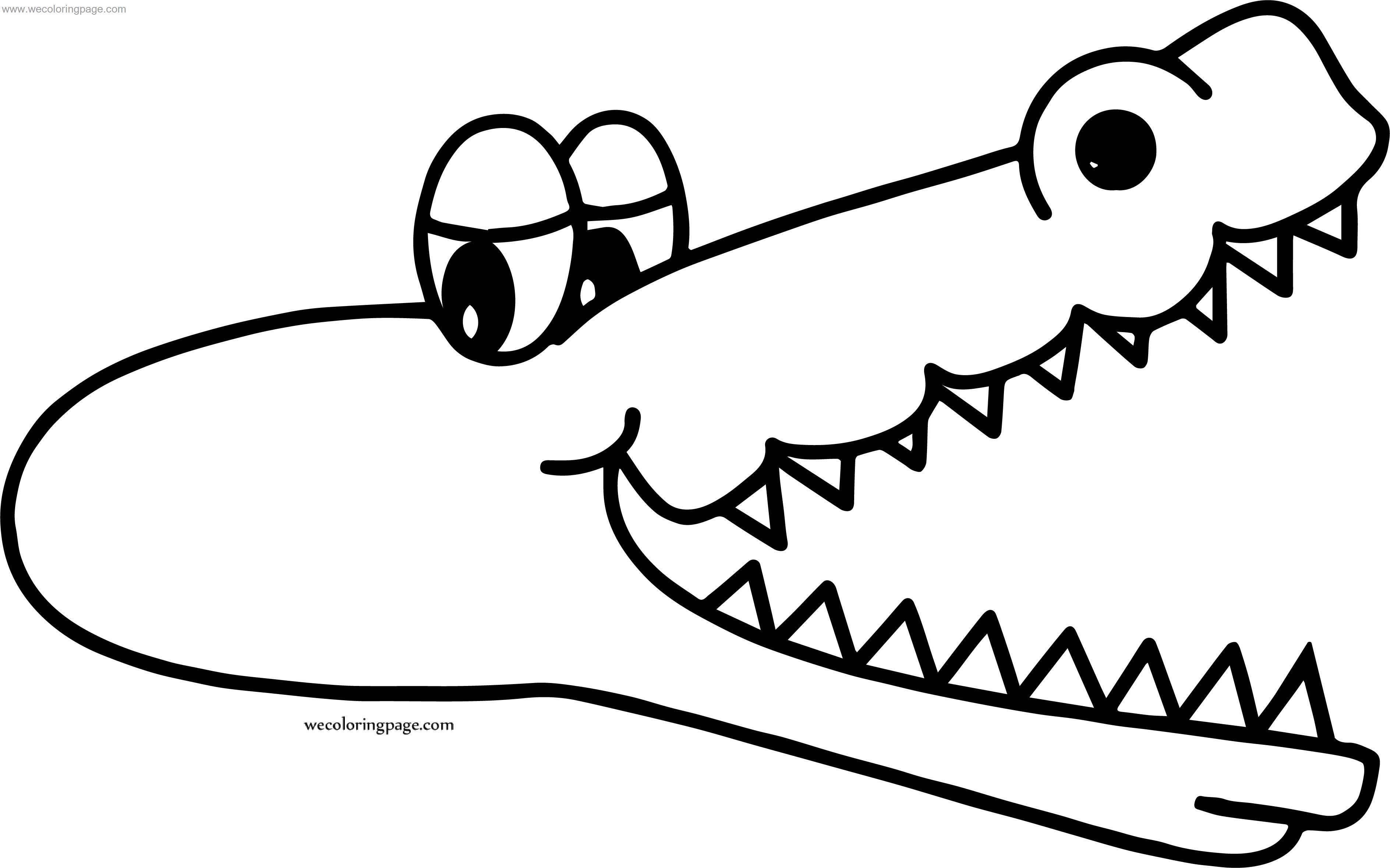 Too Crocodile Alligator Coloring Page