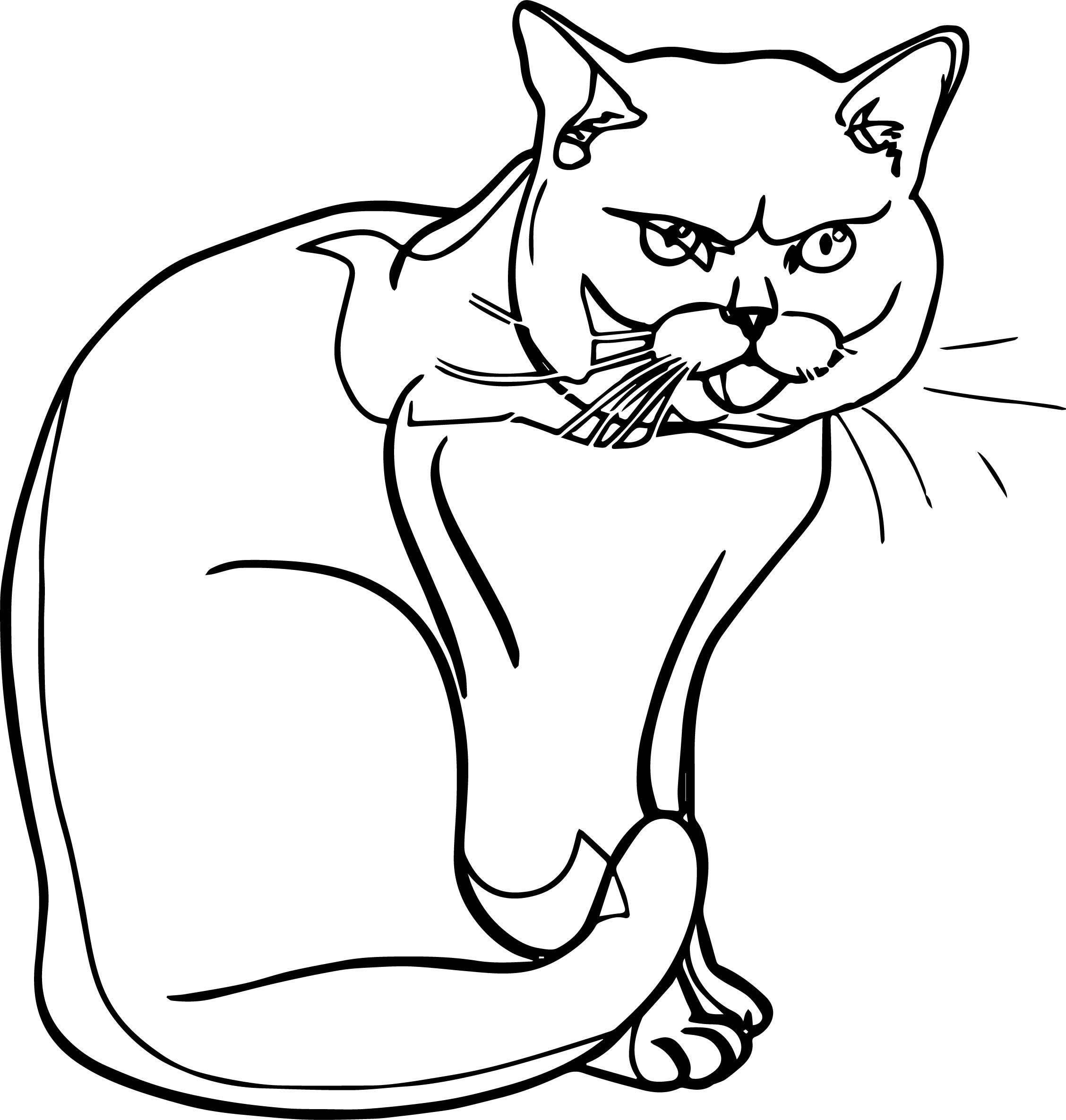 Try Cat Coloring Page