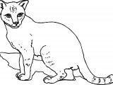 We Cat Coloring Page