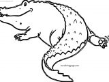 We Crocodile Alligator Coloring Page