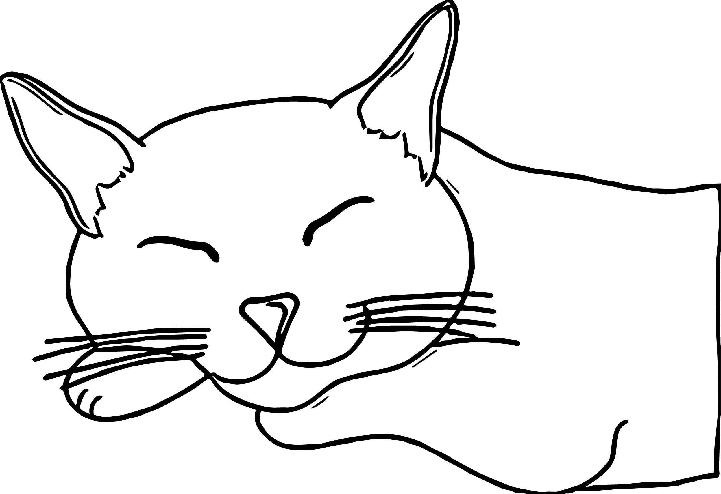 Which Cat Coloring Page