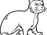 Who Cat Coloring Page