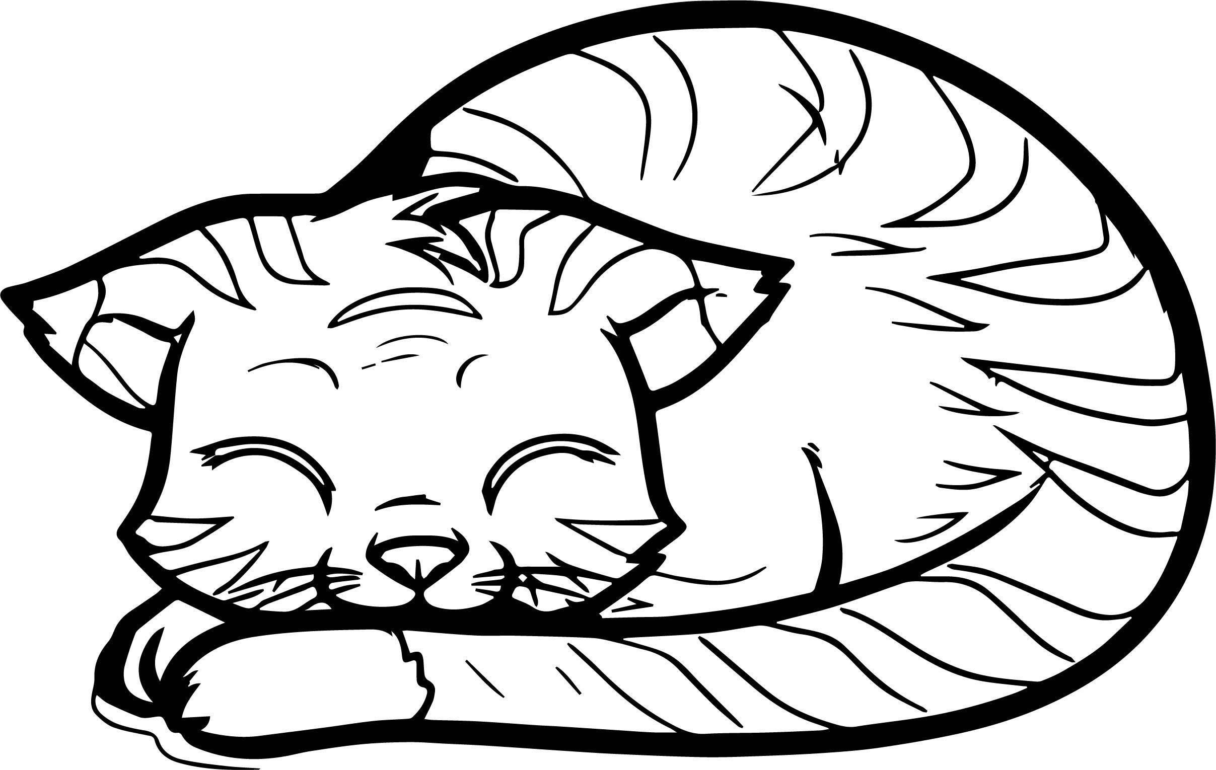 Word Cat Coloring Page