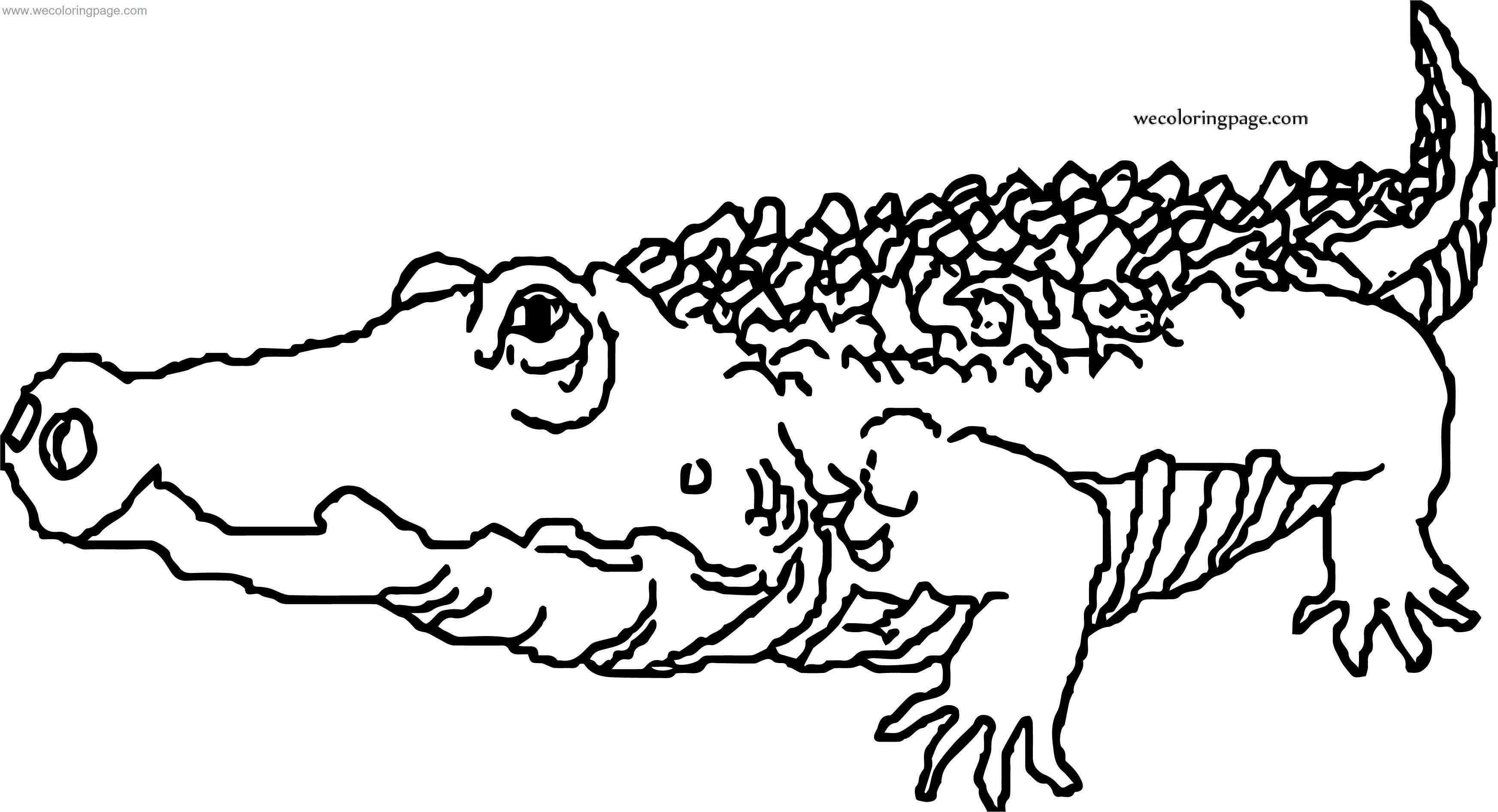 Word Crocodile Alligator Coloring Page