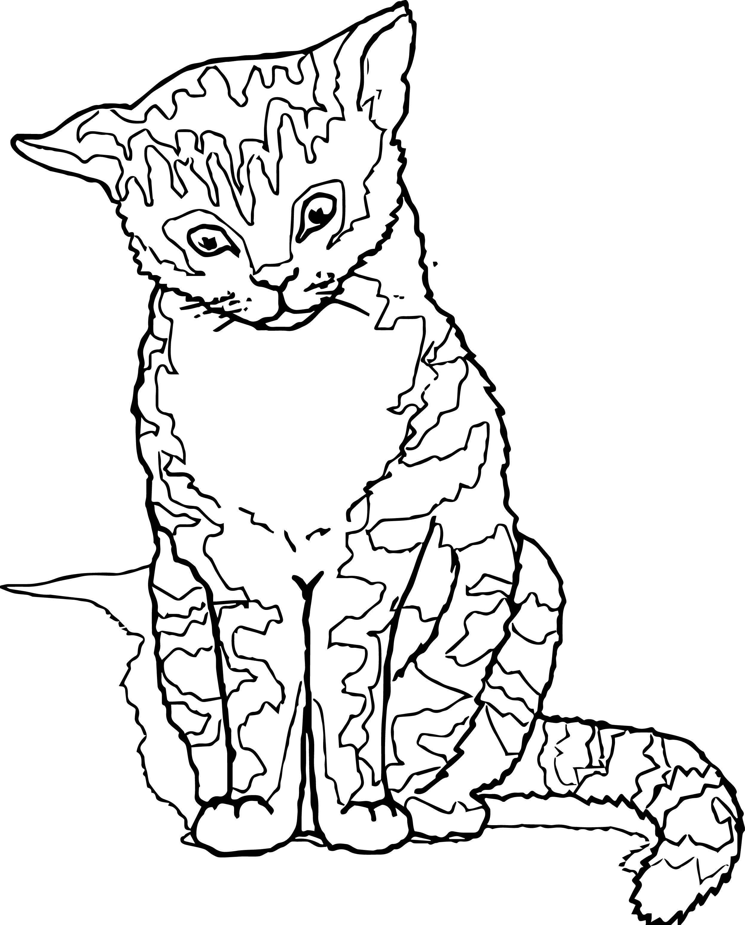 World Cat Coloring Page