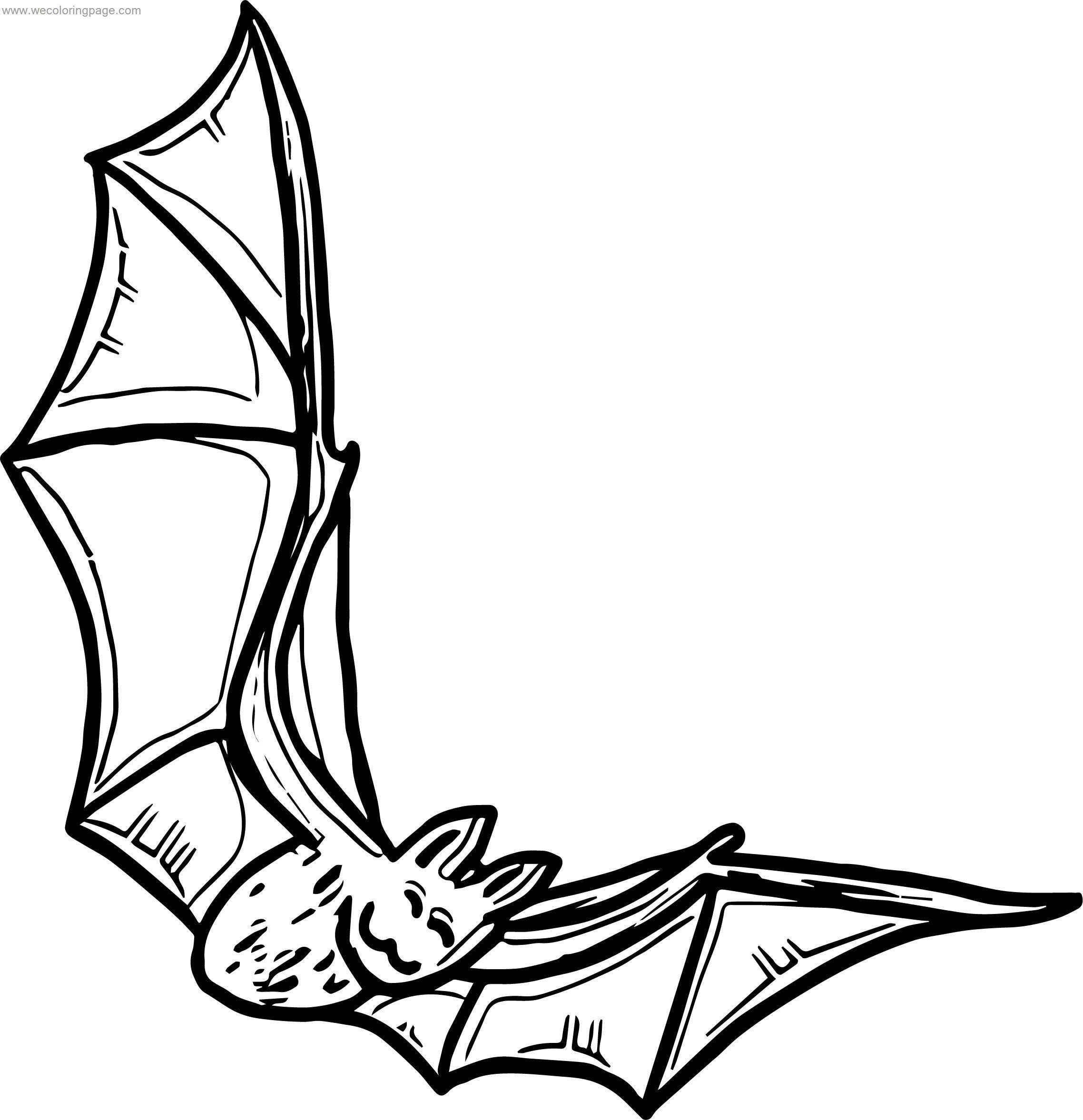 Your Bat Coloring Page